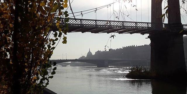 Rive du Rhône - Lyon